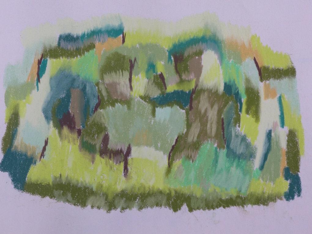 soft pastel op papier 50x56 cm